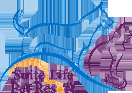Suite Life Pet Resort